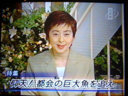 青魚倶楽部メディアファイル:今...