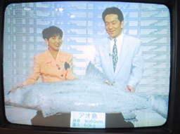 青魚倶楽部:TBSニュースの森